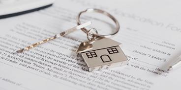 Immobilien-Dienstleistungen in Istrien